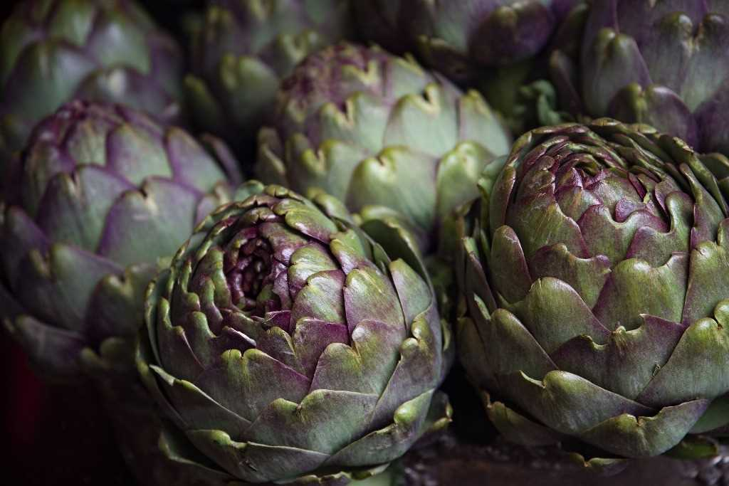 Recipes with artichokes, vegetables rich in beneficial properties