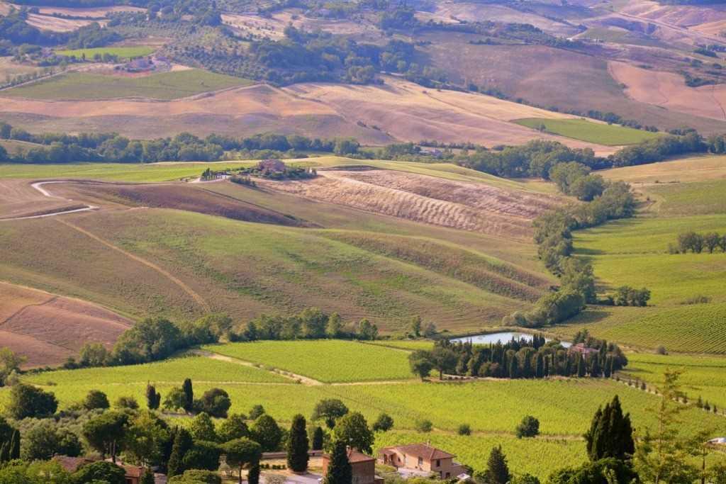 Die sanften toskanischen Hügel zur Zeit der Weizenernte