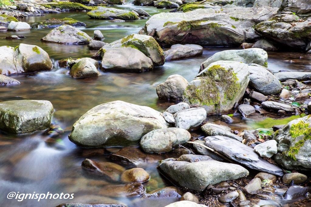 La vie et le fleuve @ignisphotos