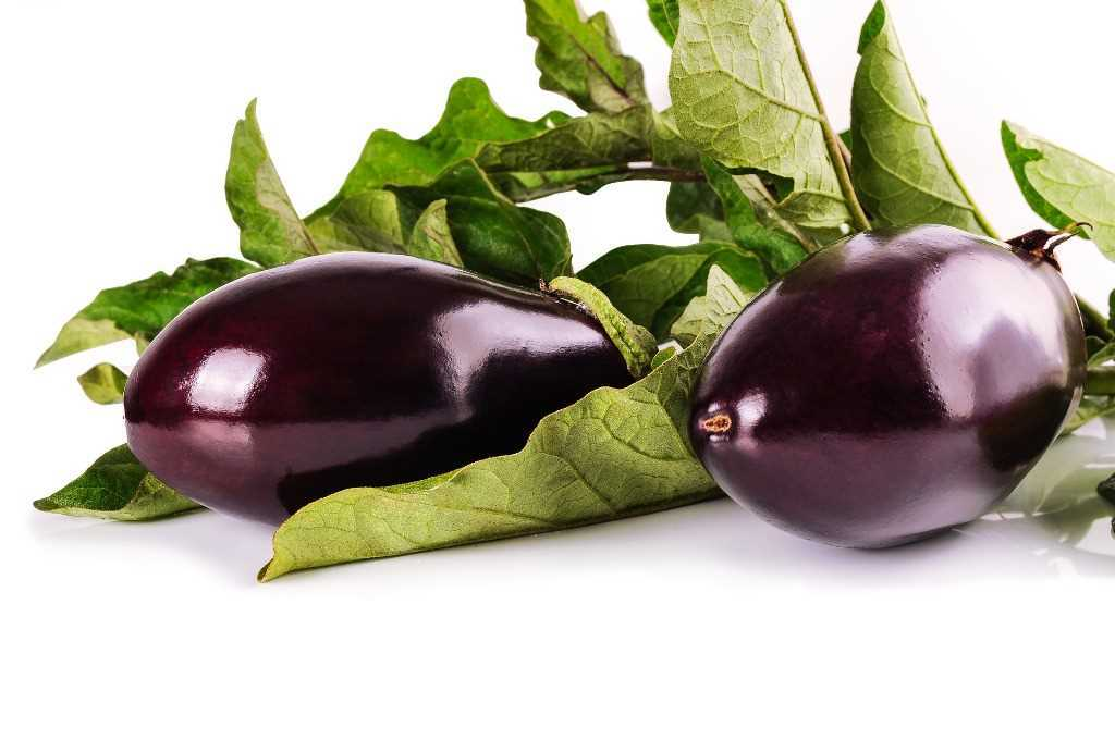 Recipes with eggplants