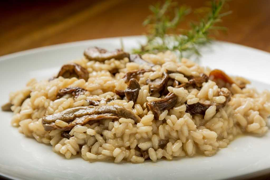 Recipes risotto, a great classic of the kitchen